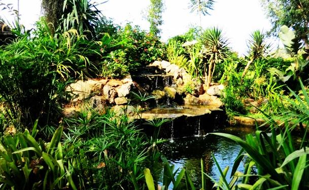 Jardins exotiques de Bouknadel