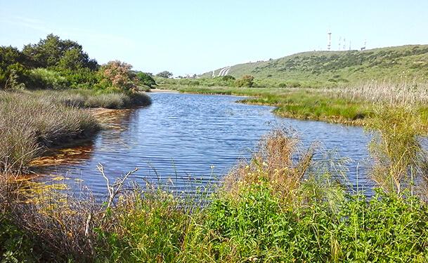 بحيرة سيدي بوغابة