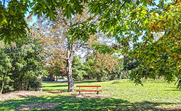 Jardín de belvedere