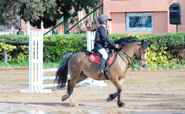 Poney Club Equestre