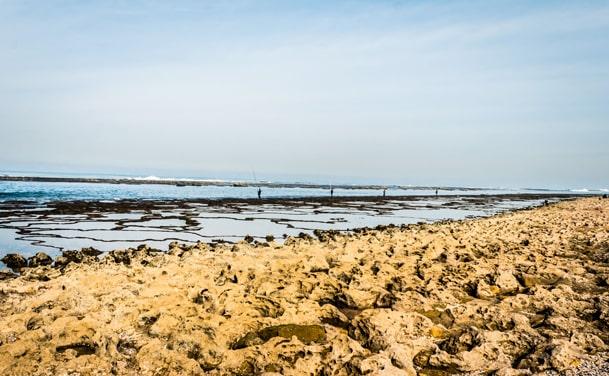 Rosemarie Beach